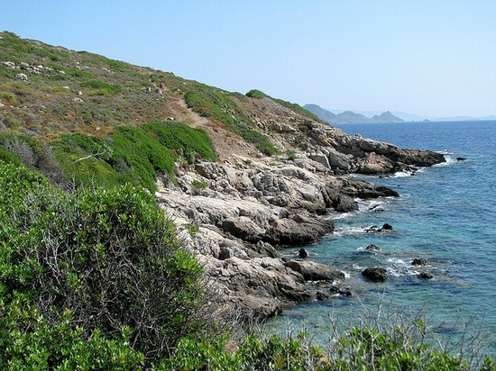 Foto isola dei conigli a Bodrum - 550x412  - Autore: Sara, foto 1 di 29