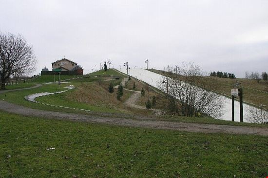 Dry Ski