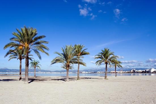 Foto palma de mallorca zeitig am strand von palma de - Fotografia palma de mallorca ...