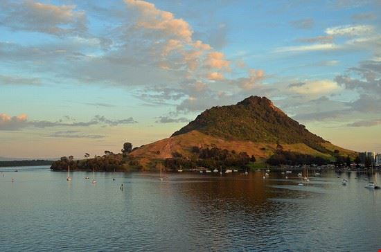 Abendliche Ankunft in Tauranga