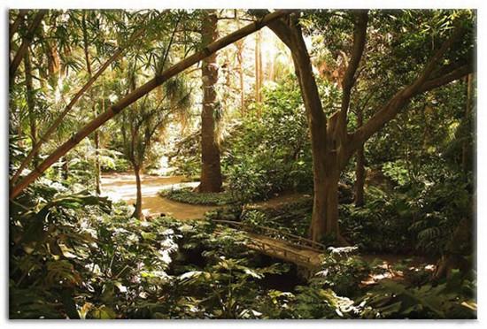 Foto malaga jardin botanique la concepcion a malaga for Jardin de la conception malaga
