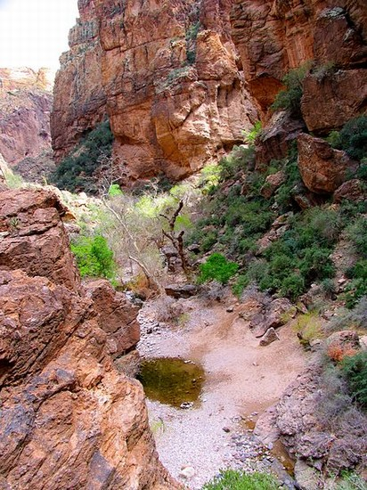 Photo Tonto National Forest in Phoenix - Pictures and Images of Phoenix - 412x550  - Author: J, photo 1 of 55