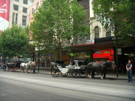 Foto per le vie della città a Melbourne - 550x412  - Autore: Daniela, foto 14 di 124