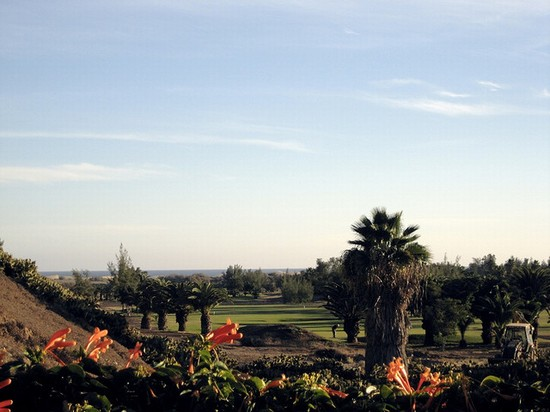 Photo maspalomas golfplatz in Maspalomas - Pictures and Images of Maspalomas