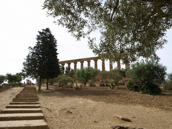 Photo valle dei templi agrigento in Agrigento - Pictures and Images of Agrigento - 550x412  - Author: Pietro, photo 2 of 87