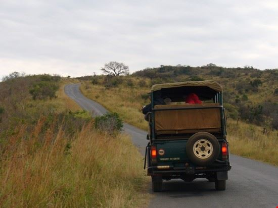 Le Jeep dei ranger