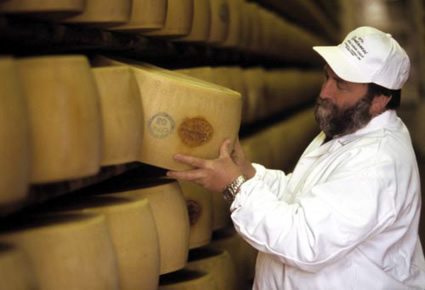 Photo Parmigiano Reggiano in Reggio Emilia - Pictures and Images of Reggio Emilia