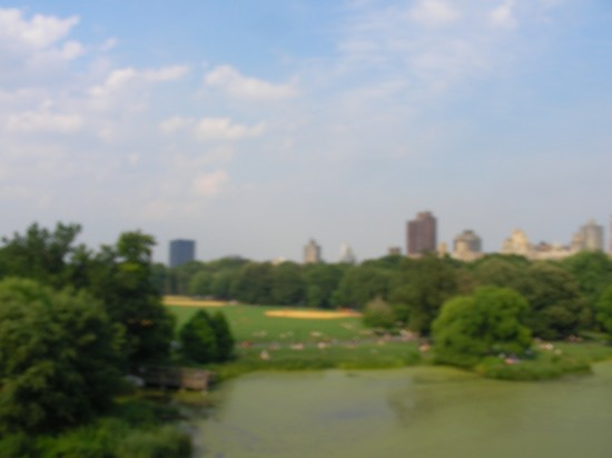 Photo in central park new york in New York - Pictures and Images of New York - 550x412  - Author: Ernesto, photo 12 of 578
