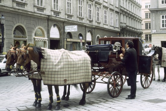 Photo carrozza vienna in Vienna - Pictures and Images of Vienna