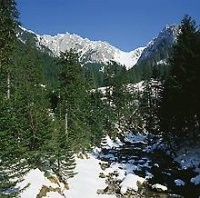 Photo Koscieliska Valley in Zakopane - Pictures and Images of Zakopane
