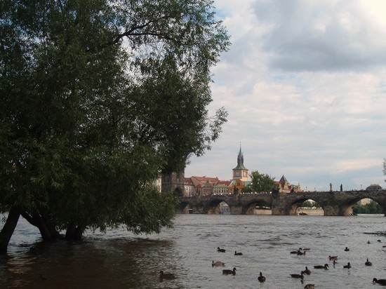 Photo praga praga in Prague - Pictures and Images of Prague - 550x412  - Author: Simonetta, photo 1 of 601
