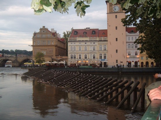 Photo praga praga in Prague - Pictures and Images of Prague - 550x412  - Author: Simonetta, photo 11 of 553