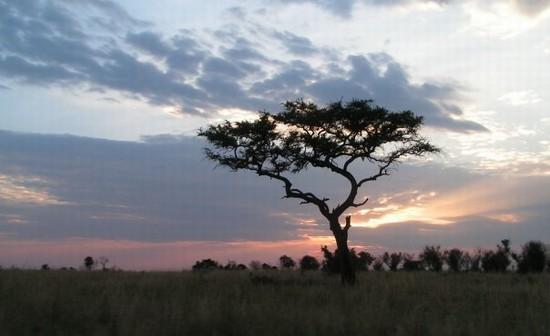 Guida NAIROBI