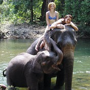 Photo goa elephant tour in Goa - Pictures and Images of Goa