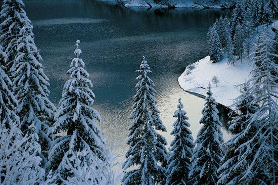 Panoramica del Lago Sauris