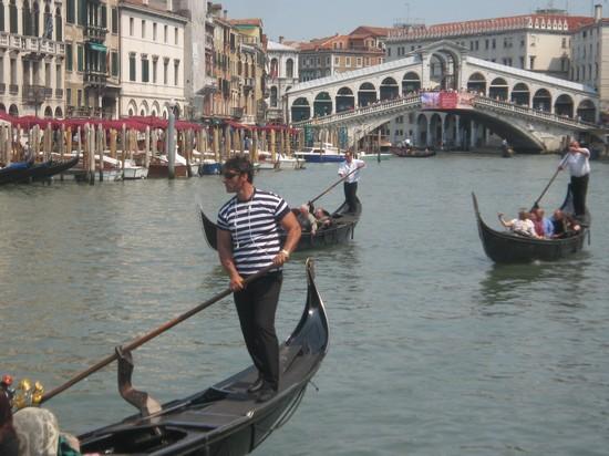 ponte di rialto venezia: Bilder und Fotos aus Venedig- 550x412  - Autor: Stefania, Foto 294 von 720