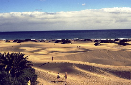 Photo le dune di maspalomas las palmas de gran canaria in Las Palmas de Gran Canaria - Pictures and Images of Las Palmas de Gran Canaria - 550x357  - Author: Laura, photo 13 of 18