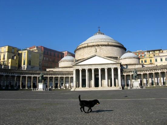 Foto Basilica di San Francesco di Paola a Napoli - 550x412  - Autore: Redazione, foto 1 di 395
