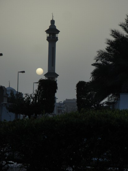 Photo EVENING time in Riyadh - Pictures and Images of Riyadh - 412x550  - Author: Rafiq, photo 5 of 5