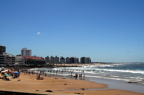 Photo punta del este punta del este in Punta Del Este - Pictures and Images of Punta Del Este - 550x366  - Author: Editorial Staff, photo 1 of 1