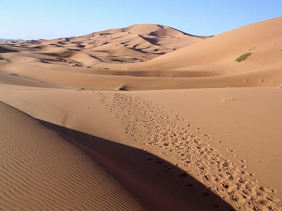 Photo Deserto del Sahara in Marrakech - Pictures and Images of Marrakech