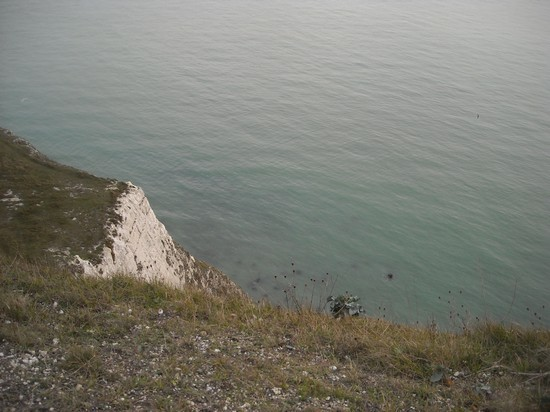 Photo White cliffs in London - Pictures and Images of London