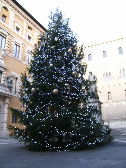 Photo Natale a Palazzo Salimbeni in Siena - Pictures and Images of Siena