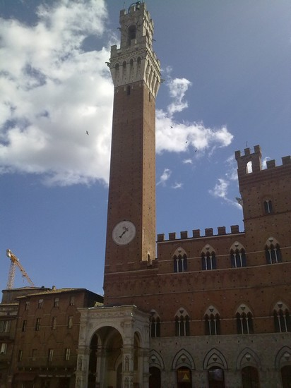 Photo Piazza in Siena - Pictures and Images of Siena