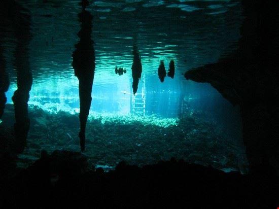 57539 tulum cenote diving
