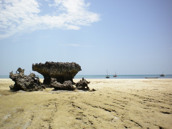 Photo isola di qwale zanzibar in Zanzibar - Pictures and Images of Zanzibar - 550x412  - Author: Daniela, photo 53 of 167