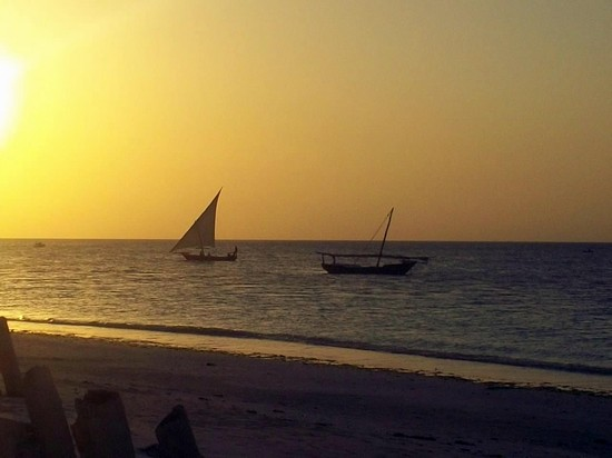 Photo dhow in Zanzibar - Pictures and Images of Zanzibar