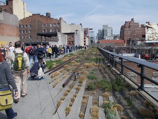 Photo new york high line in New York - Pictures and Images of New York - 550x412  - Author: Ferny, photo 1 of 578
