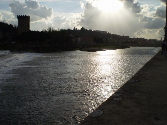 Photo arno firenze firenze in Florence - Pictures and Images of Florence - 550x412  - Author: Marialuciana, photo 71 of 528