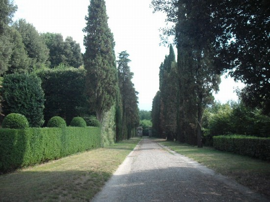 Photo villa oliva lucca in Lucca - Pictures and Images of Lucca - 550x412  - Author: Marco, photo 40 of 205