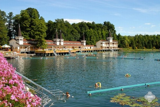 Photo thermal lake in Hévíz - Pictures and Images of Hévíz