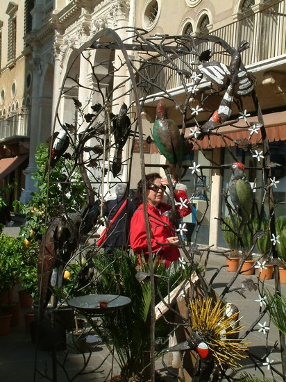 Photo aprile  2012 fiori  colori emostra mercato in piazza dei signori vicenza in Vicenza - Pictures and Images of Vicenza - 412x550  - Author: Nicoletta, photo 18 of 71