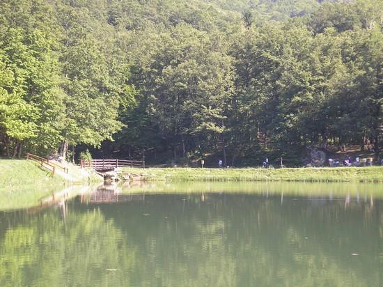 Foto lago 7 a bagno di romagna 550x412 autore - Lago pontini bagno di romagna ...