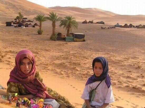 70066 fez camel trek from fez