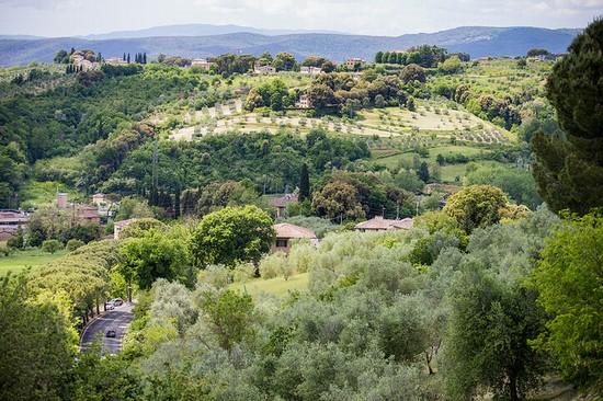 Montegrotto Terme photos, places and hotels — GoTravelaz