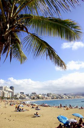 Photo las palmas de gran canaria spiaggia della citta in Las Palmas de Gran Canaria - Pictures and Images of Las Palmas de Gran Canaria - 280x425  - Author: Editorial Staff, photo 3 of 18