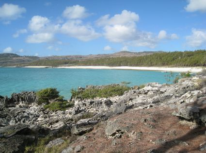 Photo Coastline in Rodrigues Island - Pictures and Images of Rodrigues Island