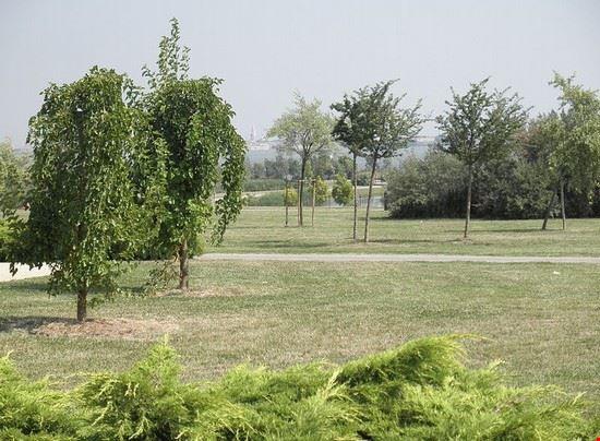 Parco di San Giuliano