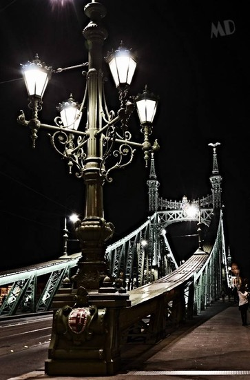 Photo Ponte Delle Liberta Budapest In Budapest Pictures