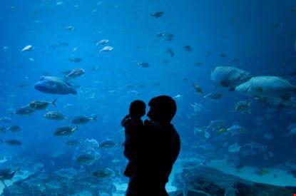 Padre e figlio all'acquario