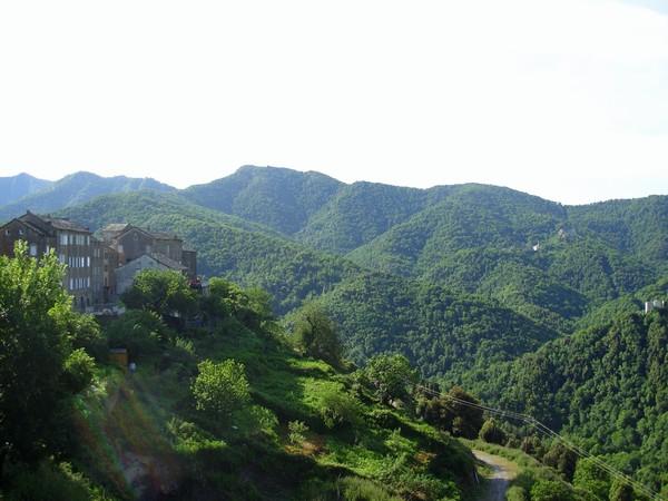 Corsica, guida pratica