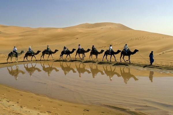 Magico Marocco