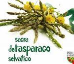 sagra_dell_asparago