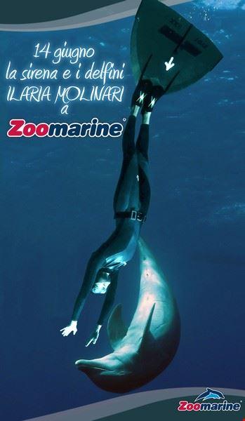 la_sirena_e_i_delfini_locandina