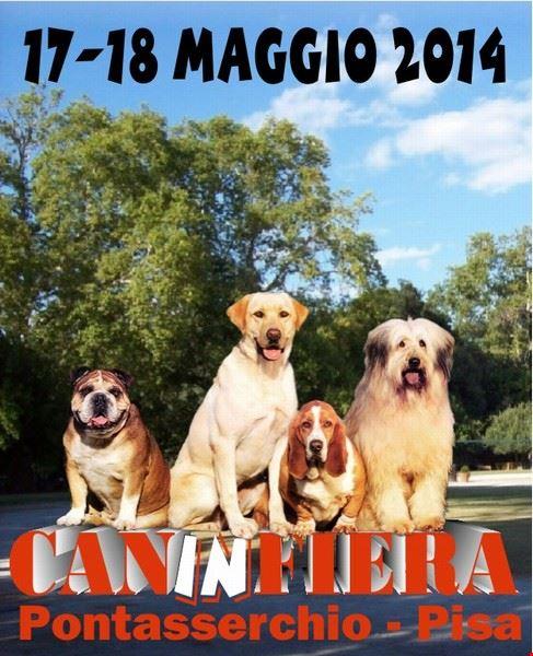 caninfiera