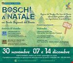 boschi_a_natale
